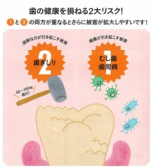 201901nico歯ぎしり02 300